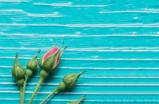 Синий деревянные поверхности с бутонами