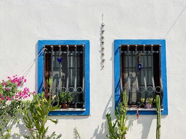 하얀 집의 푸른 나무 창틀과 집 옆에 있는 선인장 식물과 관목에는 분홍색 꽃이 있습니다. 여행 개념입니다.