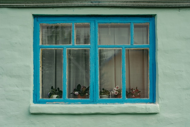 Blue wooden window of an old green rustic house with plastered wall.