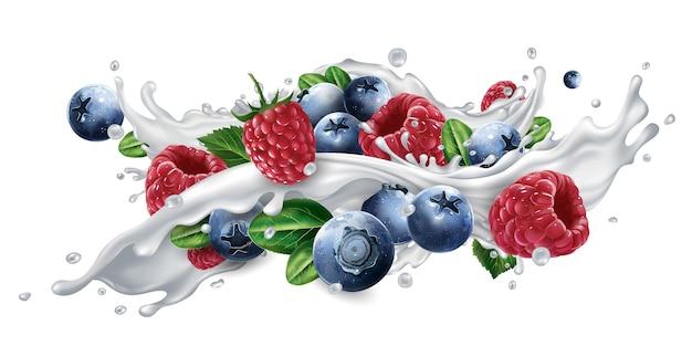 블루 베리와 흰색 배경에 고립 된 우유 또는 요구르트 스플래시에 라스베리