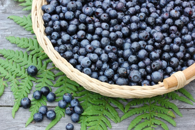 Blueberries in the basket and fern leaf on a wooden table, top view.
