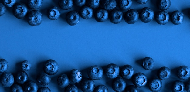 Blueberries on blue paper background, dark tones image with copyspace