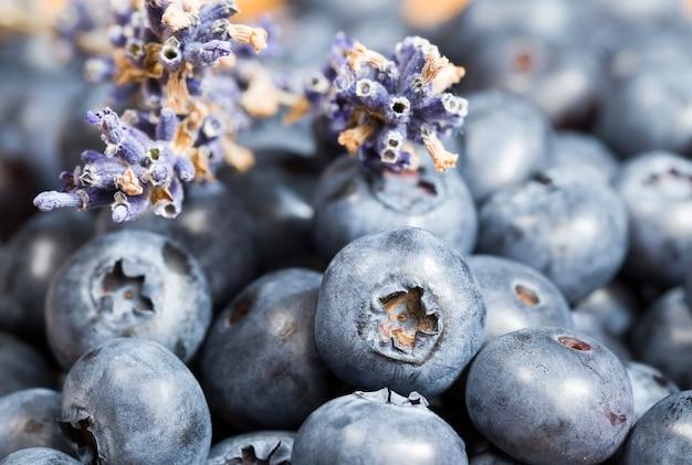 ブルーベリーは収穫された野生のブルーベリーの調理に使用できます新鮮なブルーブルーベリーは球形です