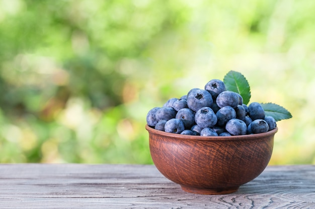 Blueberries in clay bowl