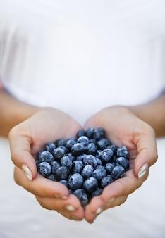 農家の手、女性の手にあるブルーベリー。果物、果実、食べ物、自然