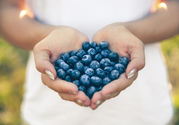 農家の手、女性の手にあるブルーベリー。