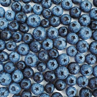 Черника на белом. текстура концепции блога или журнала еды.