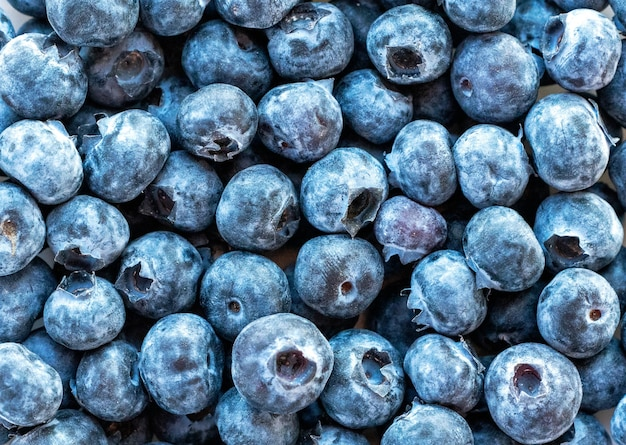 Blueberries on the table background close up