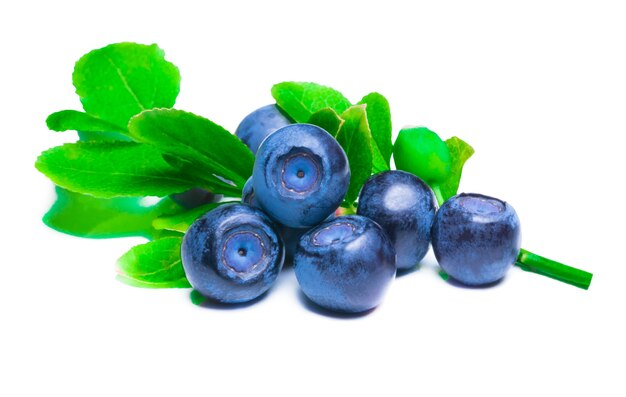 Blueberries with leaves isolated on white background.