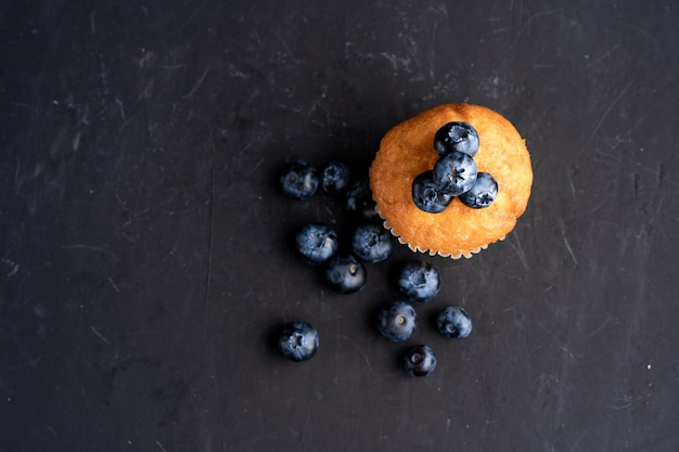 Blueberry antioxidant organic superfood and sweet muffin  for healthy eating and dieting nutrition top view on dark black