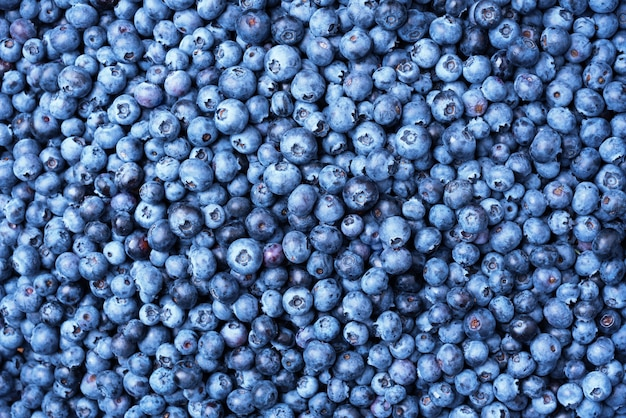 Blueberry berries texture background