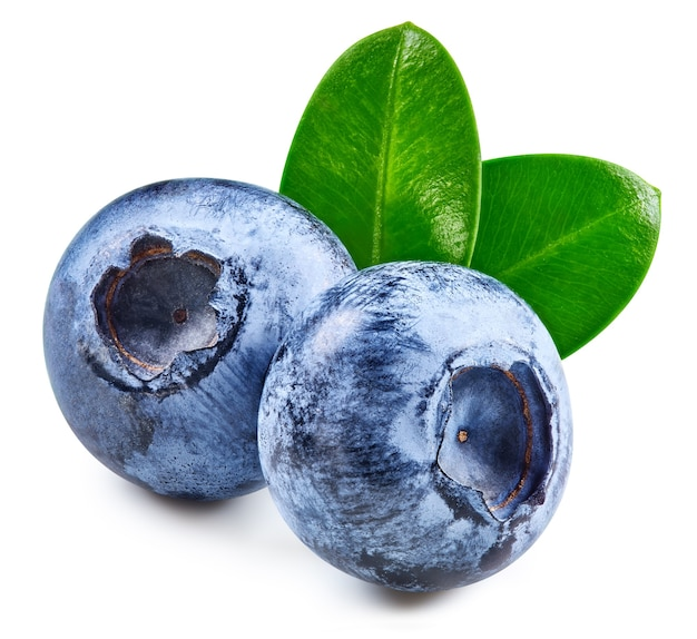 Blueberry isolated on white with clipping path
