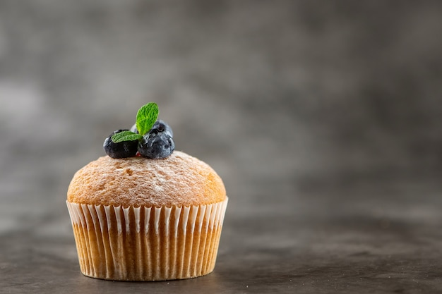Blueberry muffin on grey. side view.