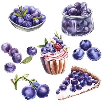 ブルーベリー。水彩植物イラスト。白い背景に手描きの水彩画ブルーベリー。