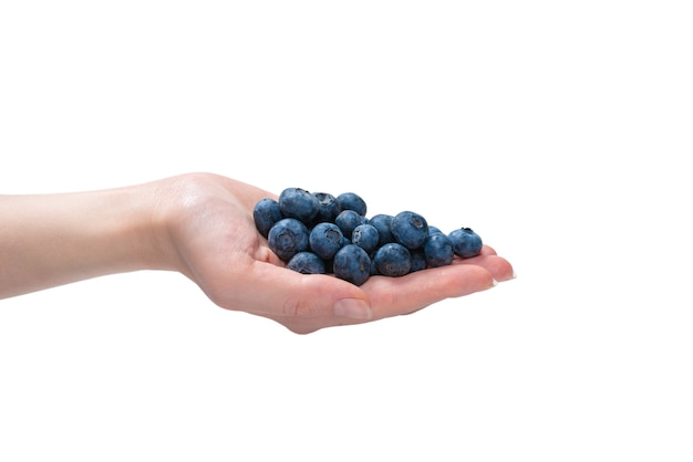 Bluepberryは、白い背景で隔離の女性の手に保持されます。上面図。