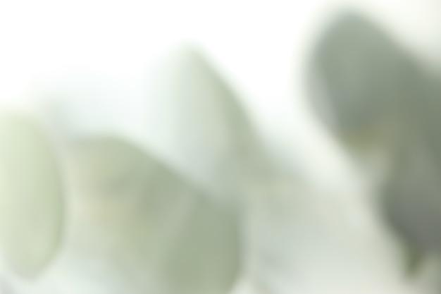 흰색 녹색 색상의 배경 무늬를 흐리게