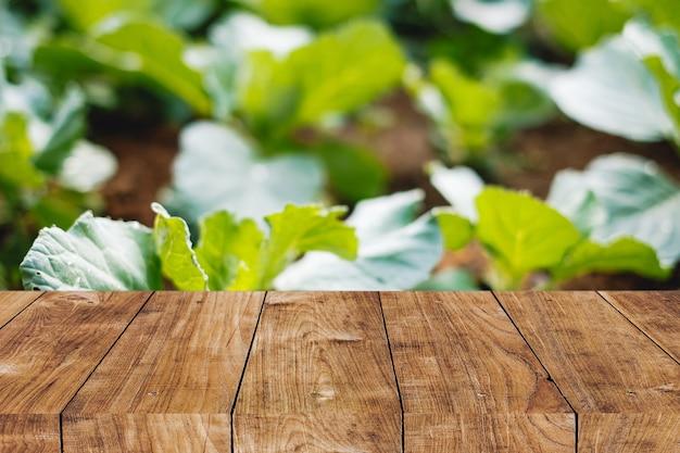 Размытие домашнего огорода на заднем дворе с деревянной столешницей на переднем плане для естественного рекламного фона