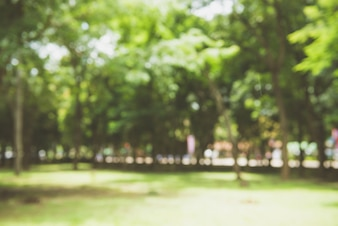 Blur nature green park with bokeh sun light abstract background. Copy space of travel adventure and environment concept. Vintage tone filter color style.