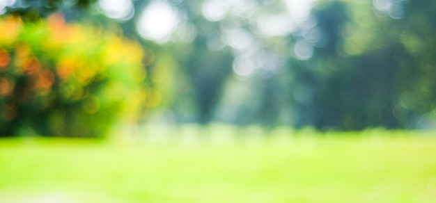 나뭇잎 밝은 배경, 자연, 정원, 봄, 여름 시즌 공원 흐림