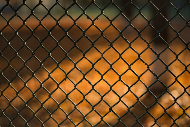 Blurred autumn landscape through a metal mesh. abstract background