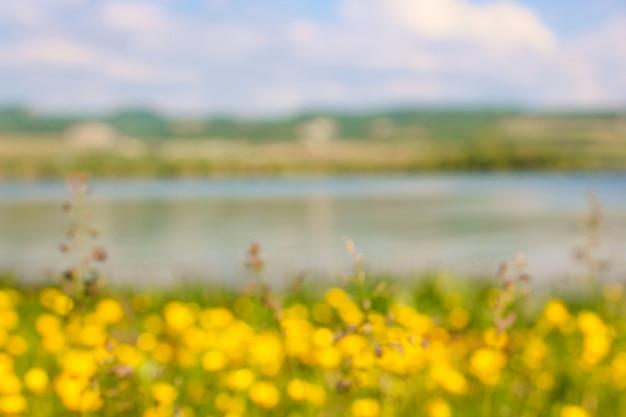 背景がぼやけて自然:黄色の花、湖、山のフィールド。