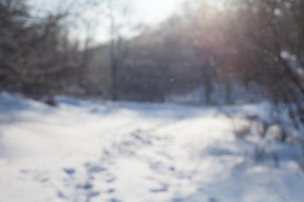 ぼやけた背景の雪に覆われた森