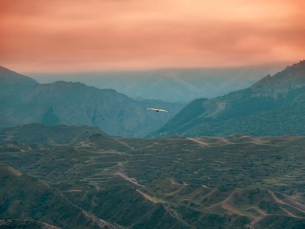 背景がぼやけ、ソフトフォーカス。青い山の上の黄色い空を飛んでいる孤独なワシ