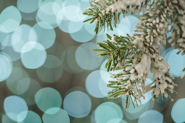 Blurred blue christmas holiday light bokeh background