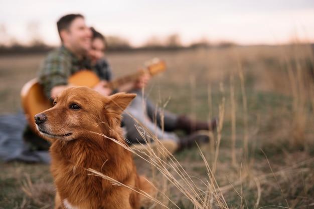 Затуманенное пара с собакой