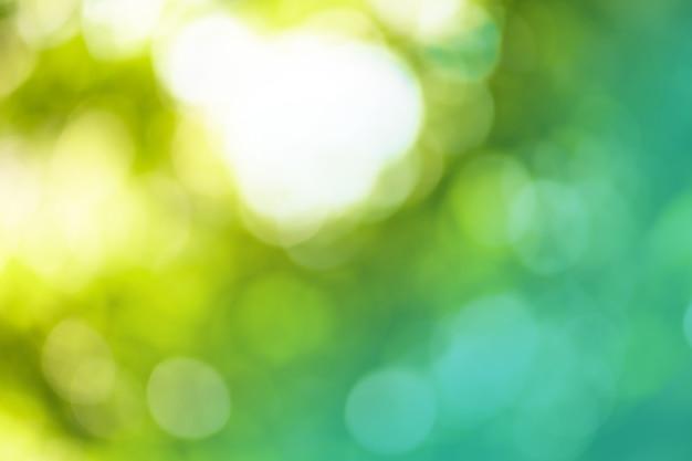 ぼやけた焦点がぼけた抽象的な緑の背景。