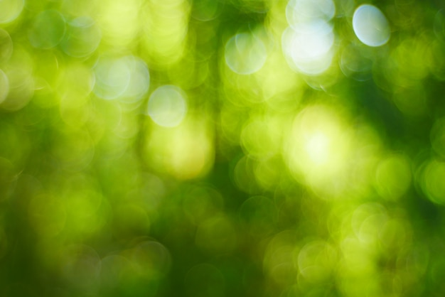 ぼやけた効果緑ボケ明るい背景
