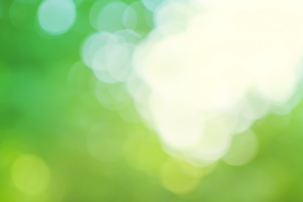 Blurred  green and blue background
