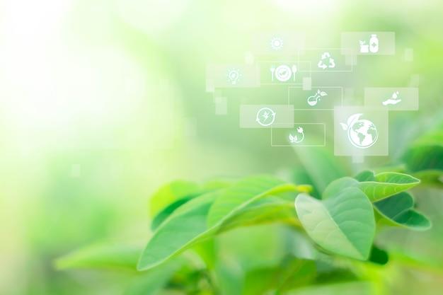 복사 공간이 있는 숲의 흐릿한 녹지 배경 기술 아이콘이 있는 지속 가능한 에너지