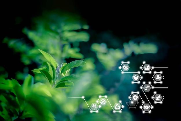 인공 지능 기술 iot 허브 구제 자연 지속 가능한 에너지 로고와 흐릿한 자연 배경