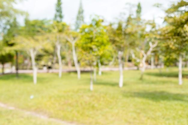 ボケ味の日光の背景とぼやけた自然緑豊かな公園