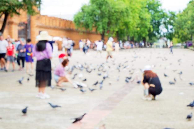 Blurred of people feeding pigeon or dove (columba livia) birds and walking