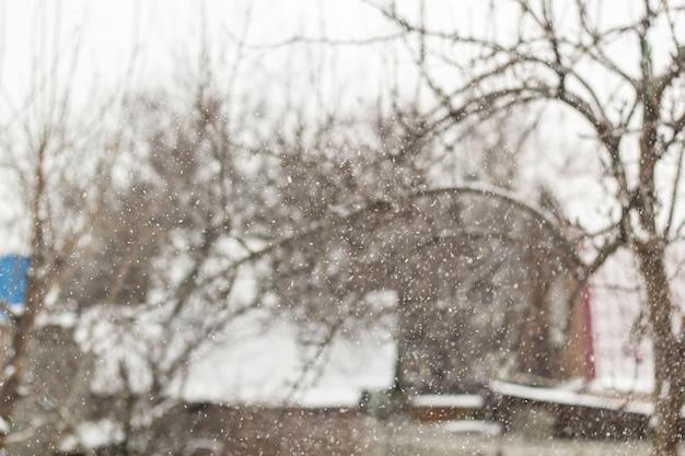 ぼやけた雪の冬の村の小さな家と木