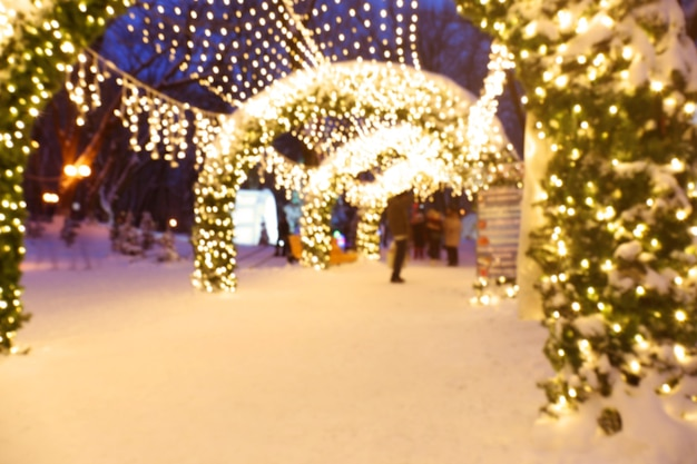 크리스마스 조명이 있는 아름다운 겨울 공원의 흐릿한 전망