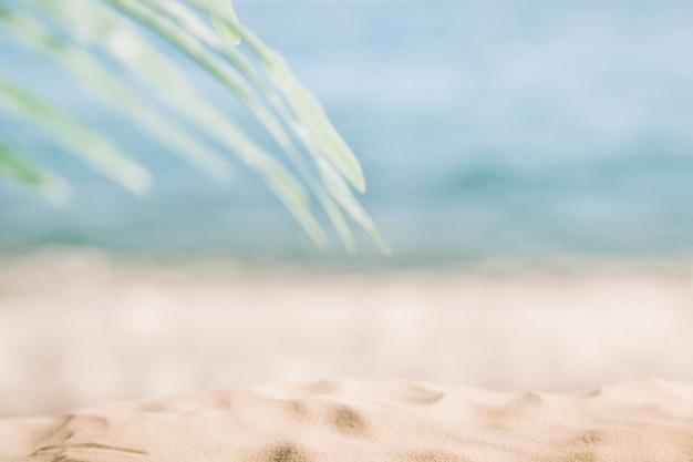 Blurry beach background