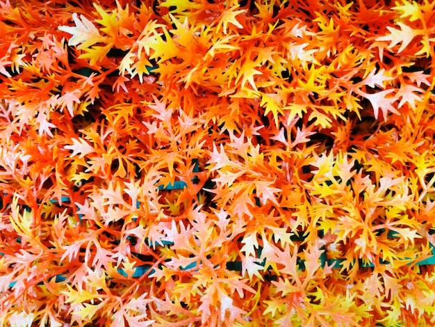人工の赤とオレンジ色の秋の葉の背景のぼやけ