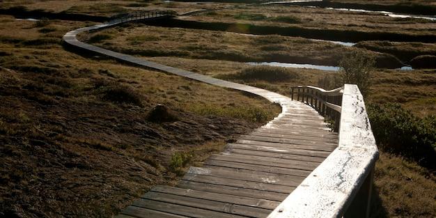 Boardwalk through the trails outside mosfellsbaer