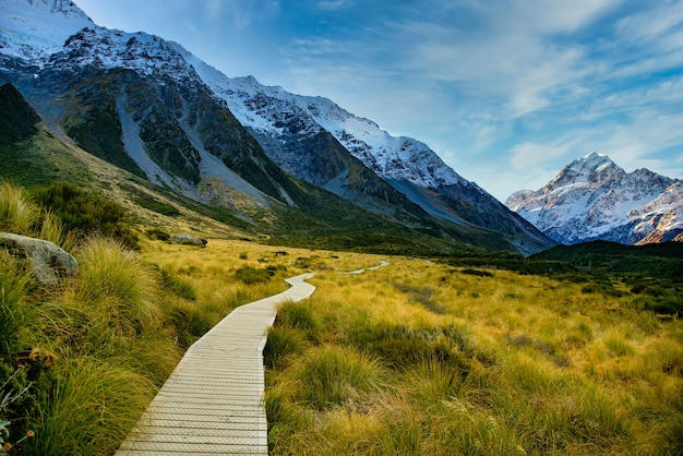 Boardwalk through the valley in the aoraki national park