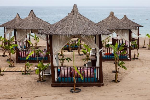 砂浜の居心地の良い場所で休息とリラクゼーションのためのビーチのビーチipゾーンのイノシシバンガロー...
