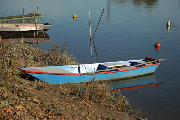 강에 보트