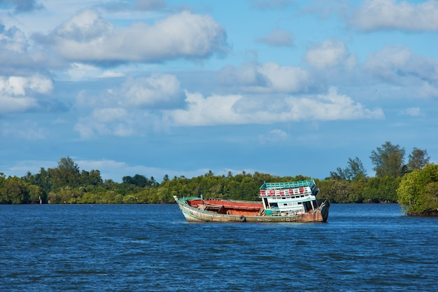 A boat in a river with mangrove forest background and bright sky.