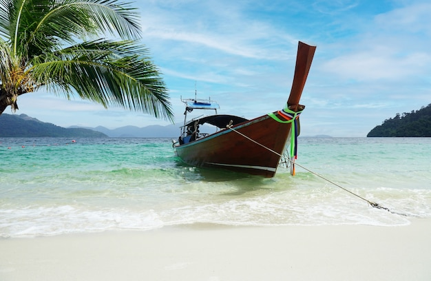 A boat that leads tourists to a white beach near the coconut tree