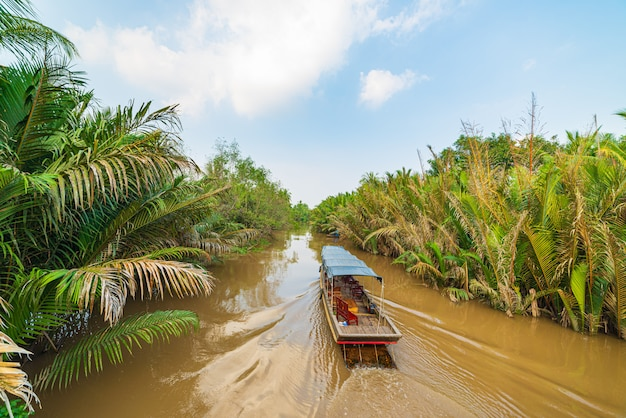 Boat tour in the mekong river delta region, ben tre, south vietnam. wooden boat on cruise in the water channel through coconut palm trees plantation.