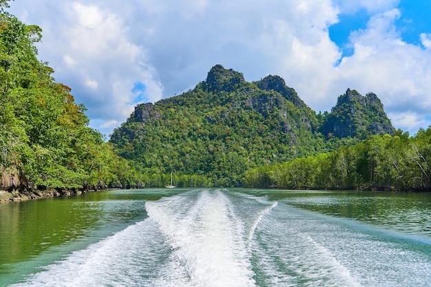 Путешествие на лодке по реке с захватывающим видом на скалы, заросшие зелеными деревьями.