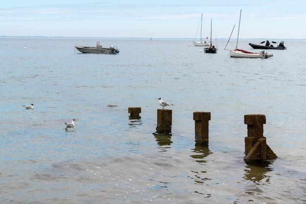 Boat in water sea in atlantic ocean ile de noirmoutier