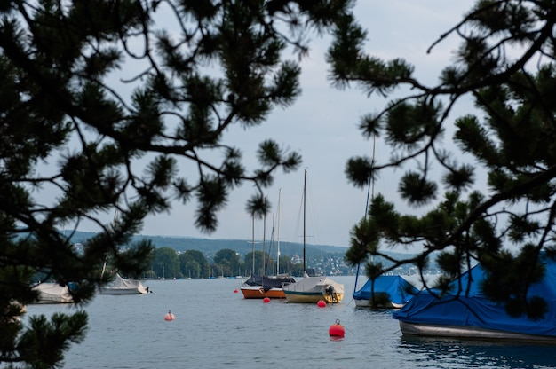 Boats and buoys on the zurich lake, switzerland